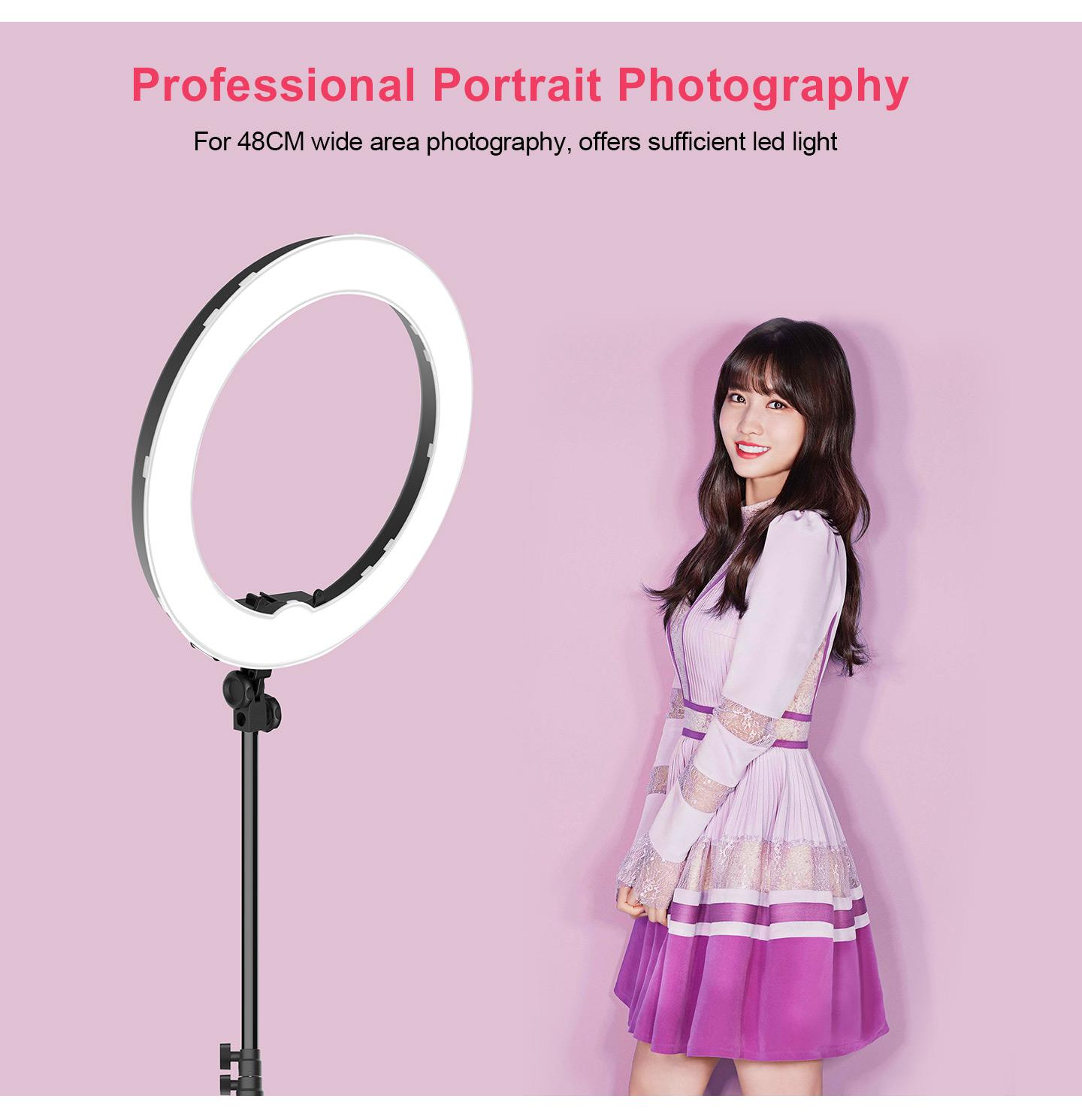 Professional Protrait Photography
