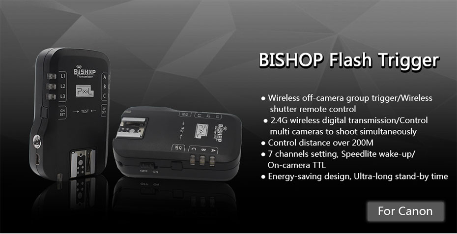 BISHOP Flash Trigger