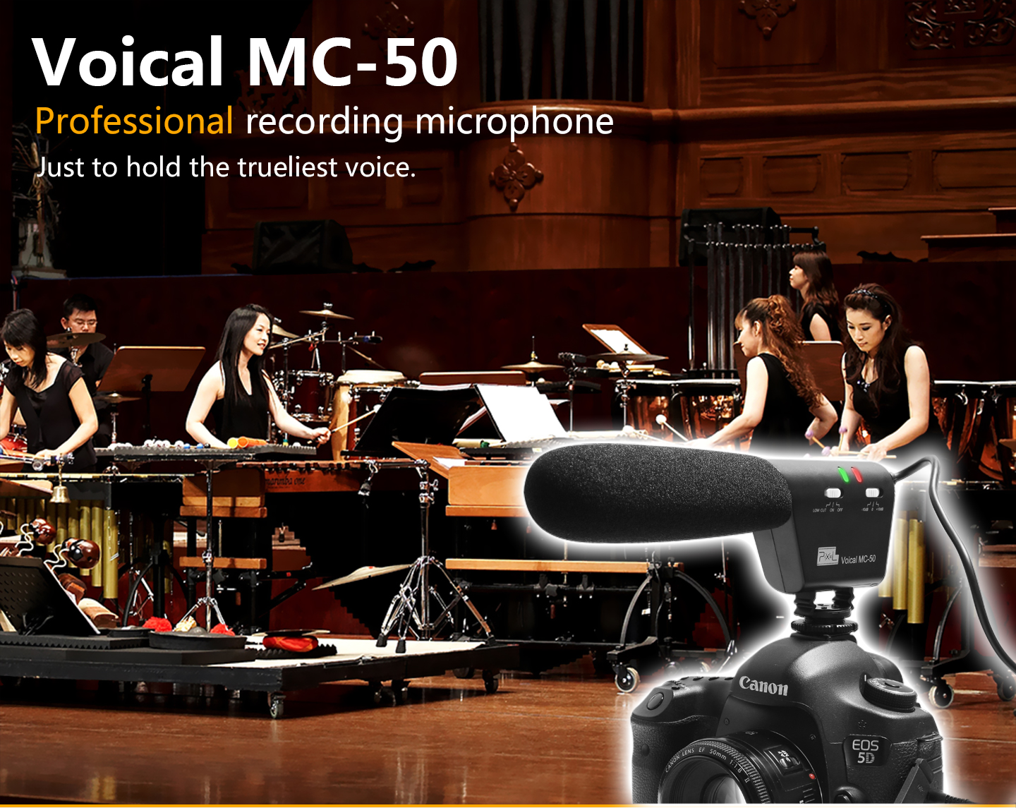 Voical MC-50 Professional recording microphone