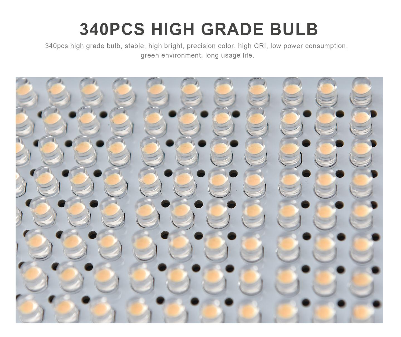 340PCS HIGH GRADE BULB